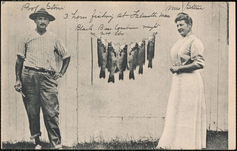 3 hours fishing at Falmouth, Mass