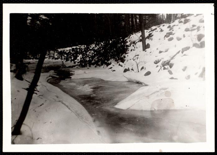 Willard Brook