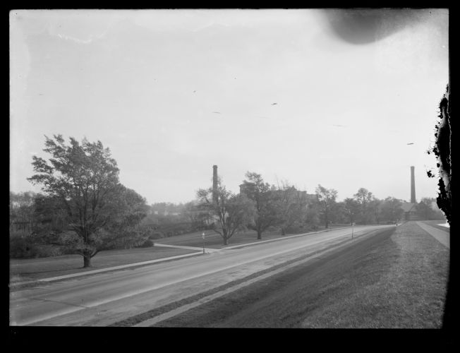Distribution Department, Chestnut Hill Reservoir, work on English Elm trees along Beacon Street, looking towards Chestnut Hill Pumping Stations Brighton, Mass., Nov. 1920-1921