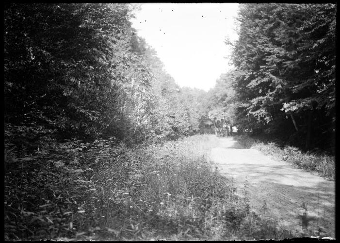 Ely Road