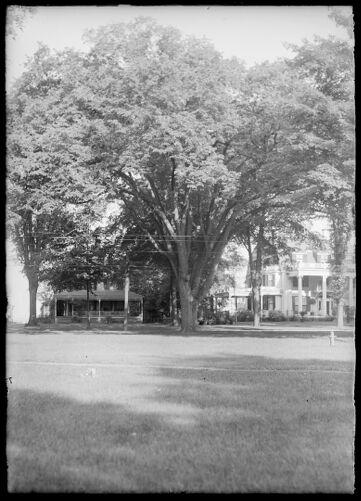 Elm near E. S. Brewers', Main Street Longmeadow