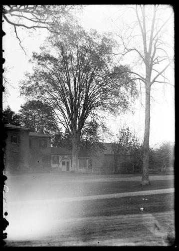 Elm tree parsonage