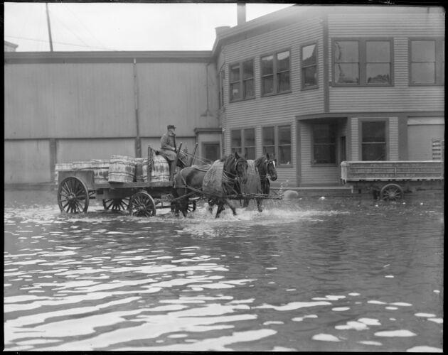 Atlantic Ave. flood, Boston, horses & wagon - largest tide since 1898