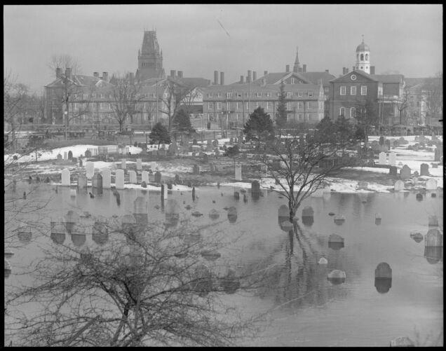 Cemetery under water in Cambridge