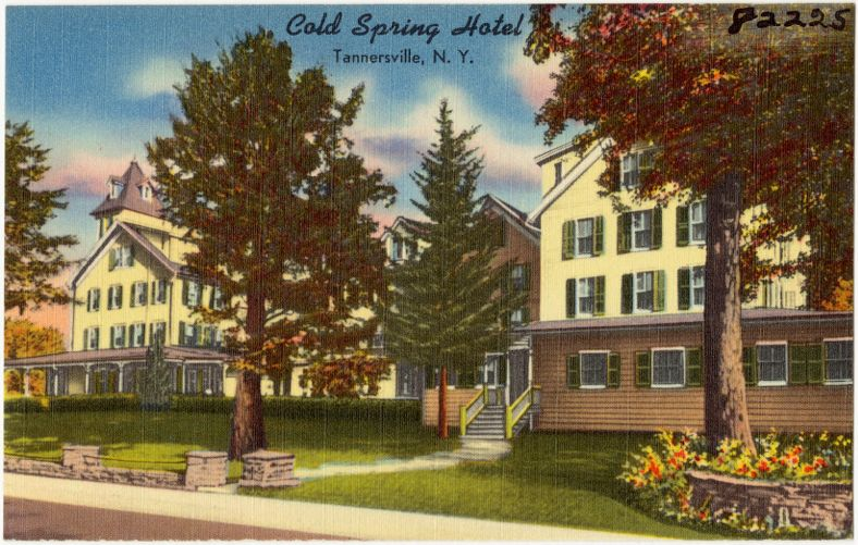 Cold Spring Hotel, Tannersville, N. Y.