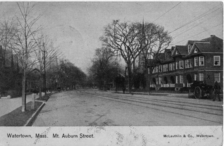 Mount Auburn Street, 1907.