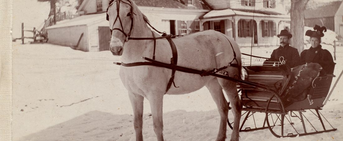 Couple in horse-drawn sleigh