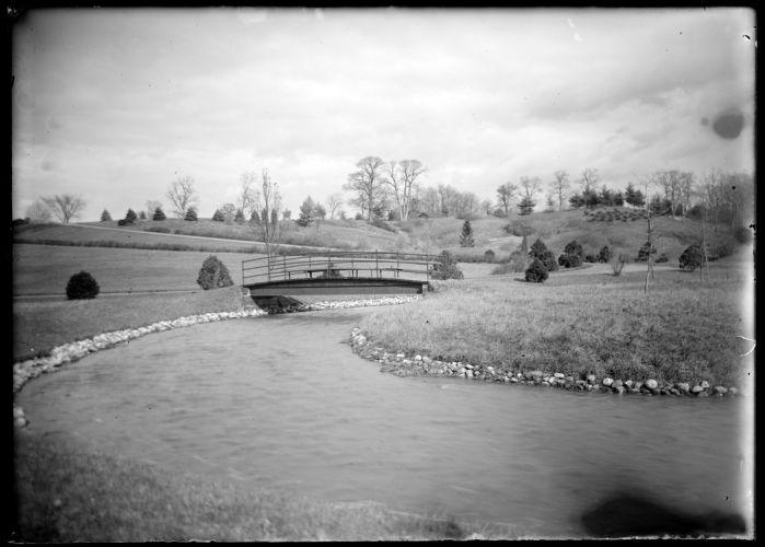 Forest Park, bridge