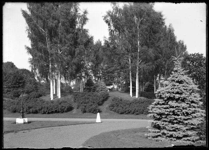Forest Park, Barney's Mound