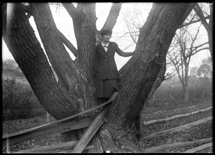 Girl in tree, Miss. R. K. [Kibbe?]