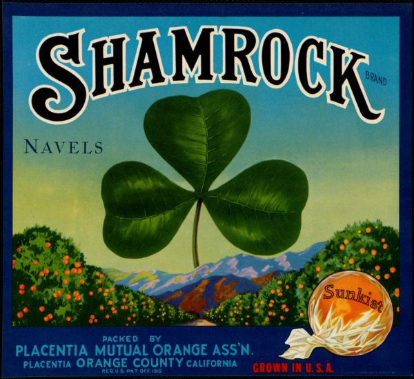 Shamrock Brand navels: Packed by Placentia Mutual Orange Ass'n., Placentia, Orange County, California