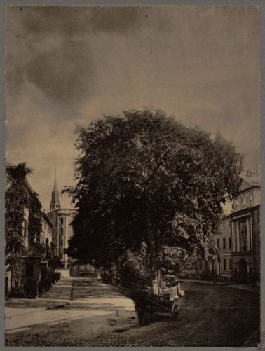 Tontine Crescent, Franklin Street