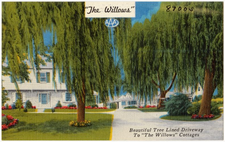 """""""The Willows"""" Hotel, Restaurant, and Cottages, 5 miles east of Lancaster, Penna on U.S. #30"""
