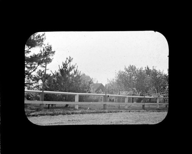 William Edward's lawn