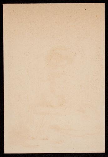 Newton photographs collection : advertising trade cards - Advertising trade cards - Auburndale trade cards - F. E. Thayer, Fish Dealer, Haskins' Block, Auburndale, Mass. -
