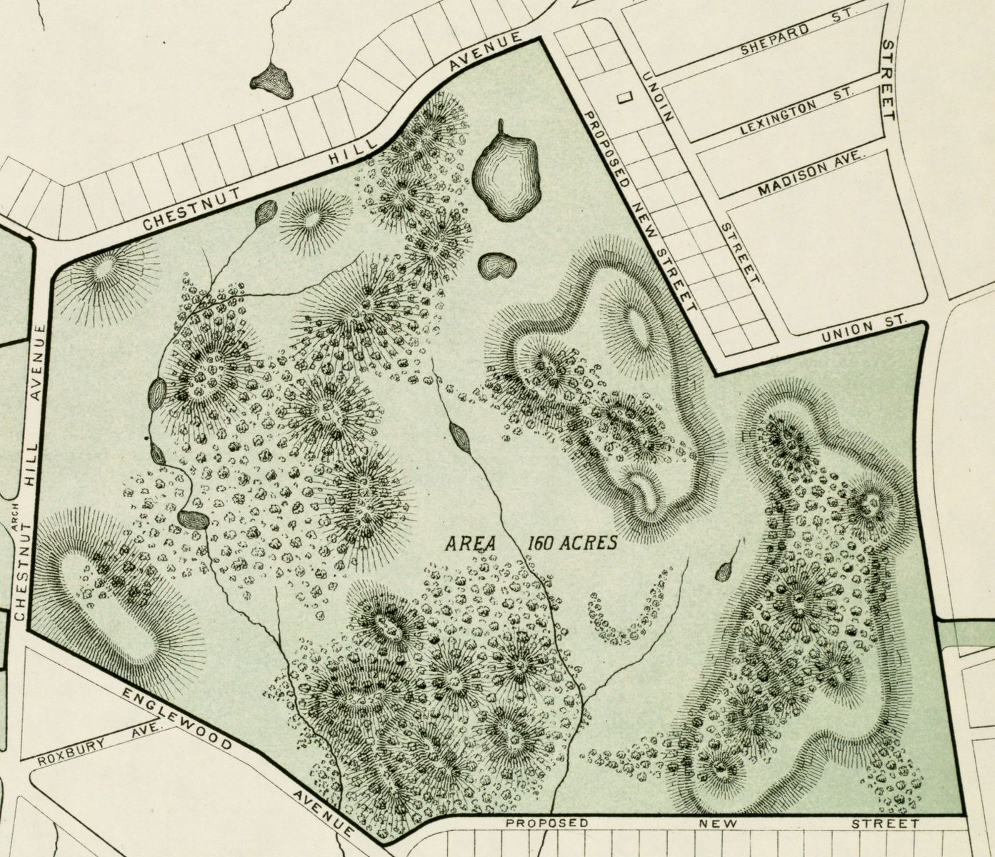 An excerpt from an 1876 plan of Brighton Park