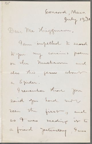 Frances Lavinia Norcross, Concord, Mass., autograph letter signed to Thomas Wentworth Higginson, 19 July 1891