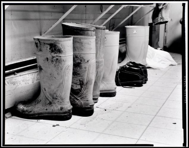 Workers' boots