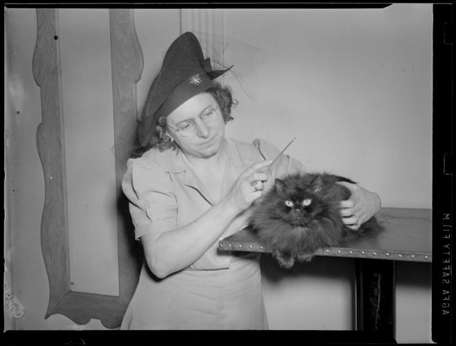 1 woman with cat