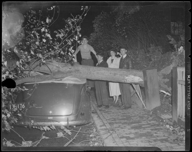 Tree crushes convertible, Hilliard St., Cambridge, Hurricane of 38