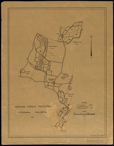 Harvard Forest Properties Petersham and Phillipston 1941
