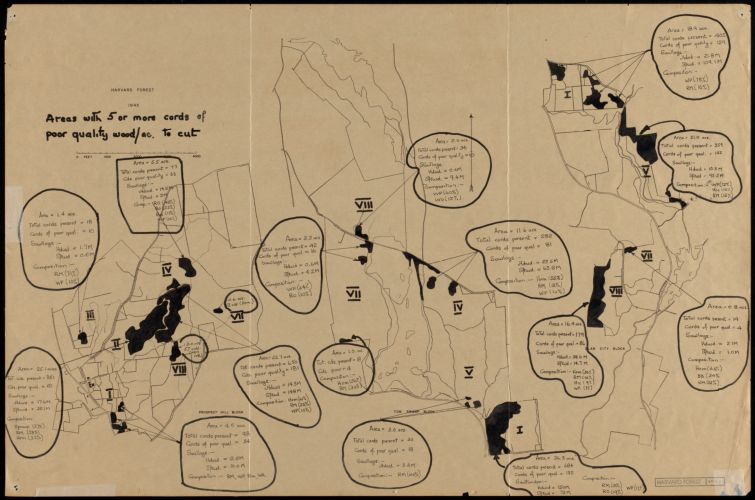 Harvard Forest 1945 Areas with 5 or more cords of poor quality wood/acre to cut