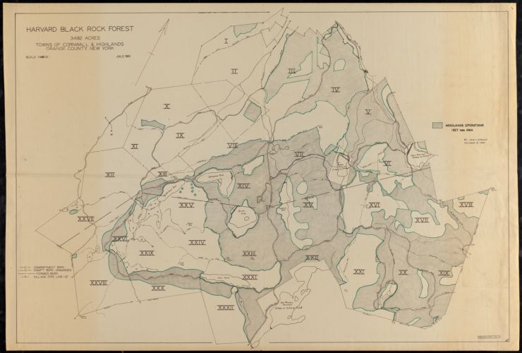 Harvard Black Rock Forest Woodlands Operations 1927-1984