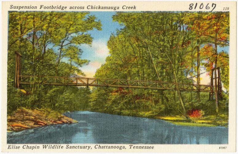 Suspension footbridge across Chickamauga Creek, Elise Chapin Wildlife Sanctuary, Chattanooga, Tennessee