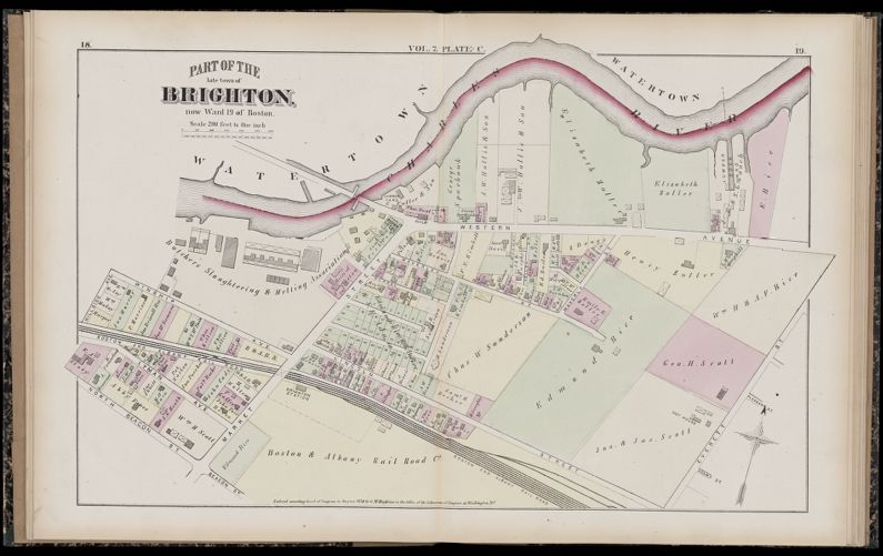 Atlas of Suffolk, county, vol. 7th, late town of Brighton, now ward 19 of Boston, Massachusetts : from actual survey & official records
