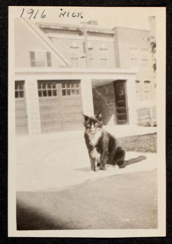 1916, Nick