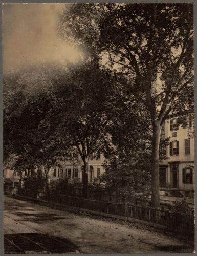 Franklin Street, Tontine Crescent