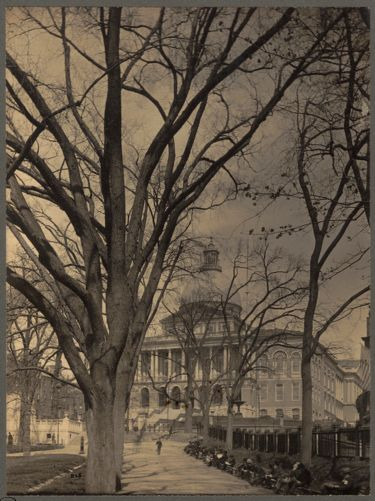 State House from Boston Common